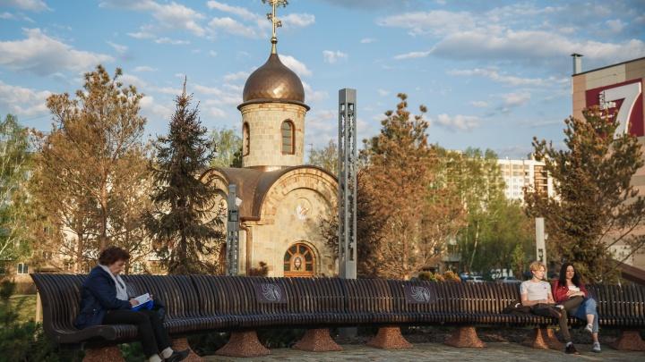 В Парке Ангелов в Кемерово начали менять пожелтевшие сосны. В мэрии рассказали, что с ними случилось