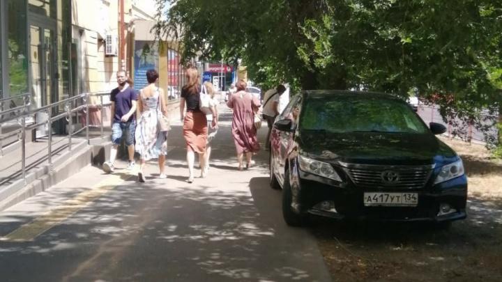 Автохамы или дендрофилы? В Волгограде любители хамской парковки прячутся под деревьями
