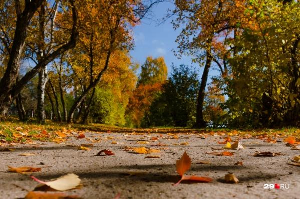 Успевайте сфотографироваться, пока на деревьях еще есть листья. Да такие красивые!