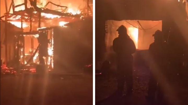 «Предполагаем, что это поджог»: два ротвейлера сгорели во время пожара в Пугачево, пострадали парень и девушка