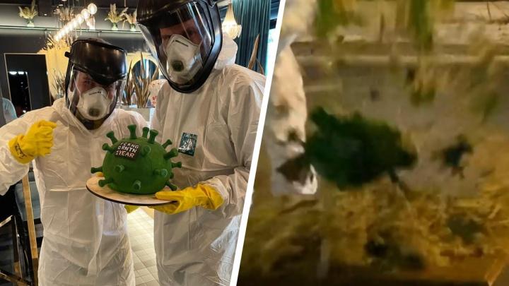 В екатеринбургском баре взорвали молекулу коронавируса