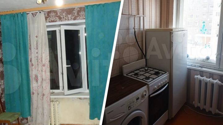 Всё лучше, чем в общаге: обзор квартир, которые сдают студентам в Ярославле