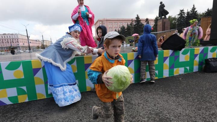 В России увеличат число продуктовых ярмарок, чтобы снизить цены на овощи