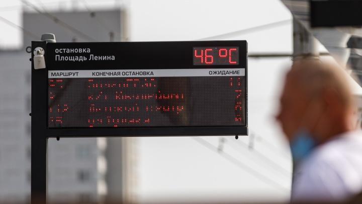 Надвигается экстремальная жара: метеорологи рассказали, какая погода ждёт Волгоград в ближайшую неделю