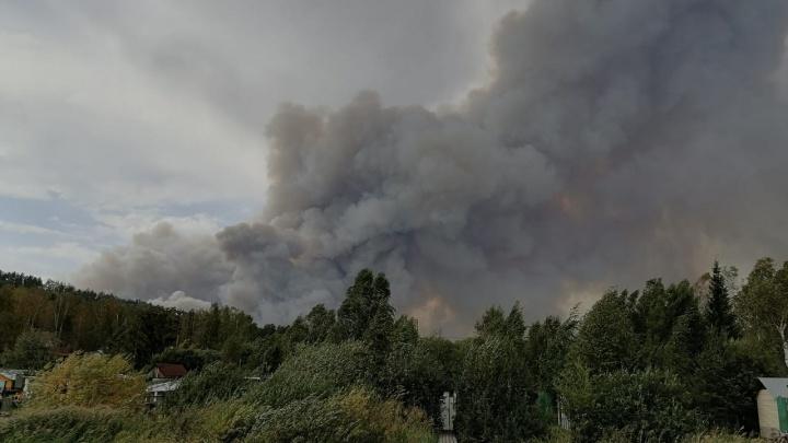 Из-за пожара на Волчихе с горнолыжного курорта начали эвакуировать людей