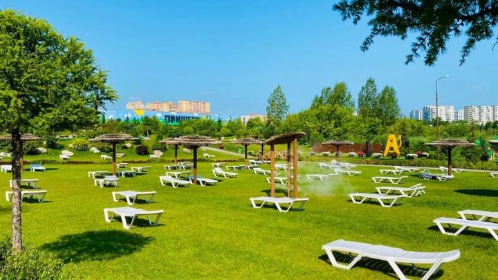 Парк-пляж «Прищепка» не может открыться в разгар сезона, так как землю с бассейнами передали «Роеву ручью»