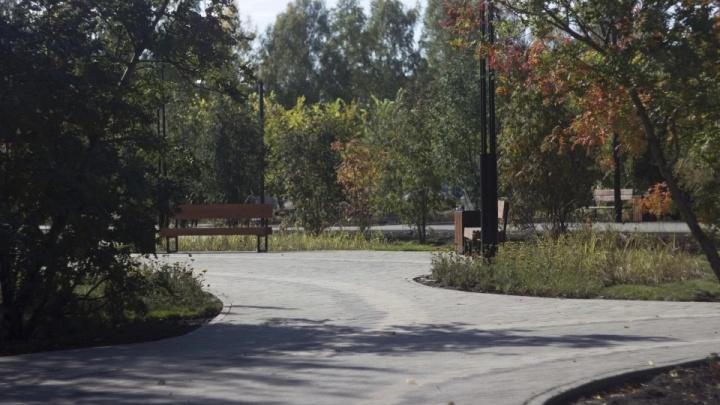 В недавно открывшийся парк на Затулинке вложат почти 7 млн рублей — что там благоустроят