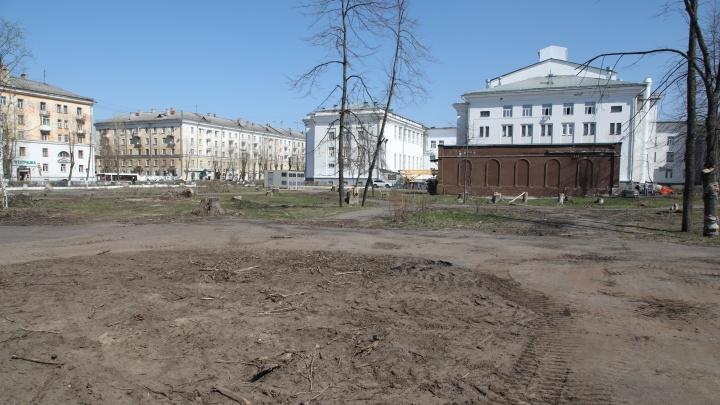 «Это варварство»: местный блогер ответил на реплику Варламова о вырубке деревьев в Северодвинске