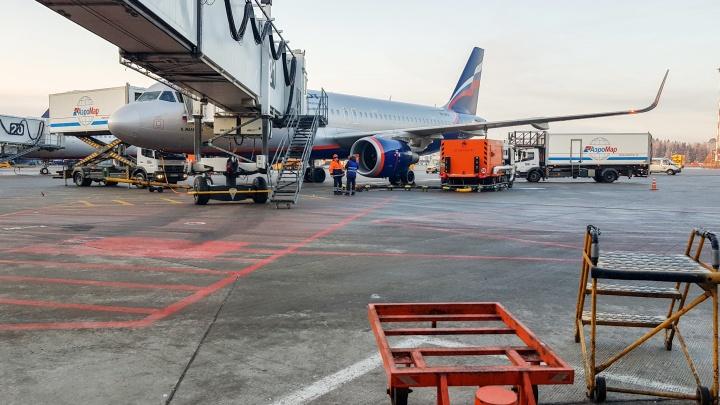 Только два из трех обещанных: аэропорт Волгограда закупает телетрапы для пассажиров