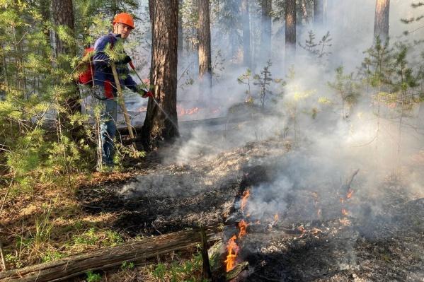 Волонтеры пытаются потушить пожар своими силами