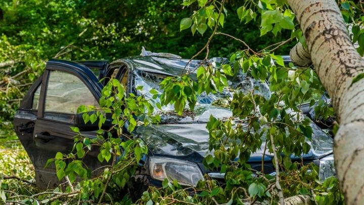 МЧС Прикамья предупреждает о сильном ветре, граде и грозах