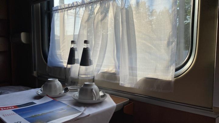 «Обнаружила в супе таракана». Родители детей, отравившихся в поезде, рассказали подробности поездки