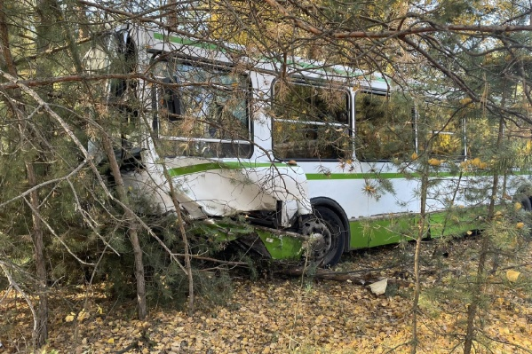 От удара автобус выкинуло с дороги