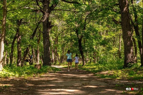 Территория памятника природы будет открыта для посещения горожан