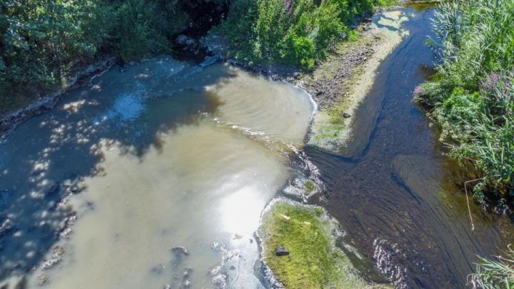 Птицефабрика «Здоровая ферма» ответила на претензии к сливу отходов в реку под Челябинском