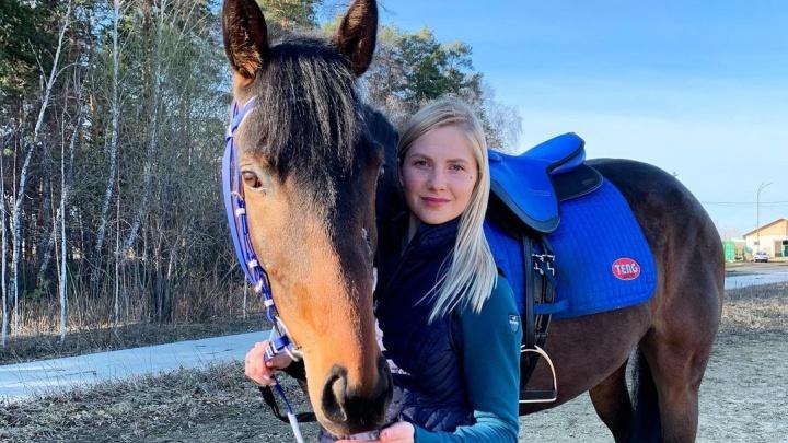 Лошадь, сбежавшую со скачек в Челябинской области, нашли в чужом табуне