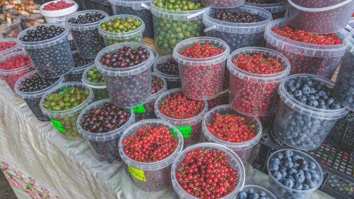 В Перми поставят специальные прилавки для фермеров и садоводов — места будут давать бесплатно