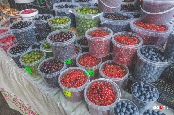 На этих прилавках можно будет продавать продукцию со своих ферм, из садов и огородов
