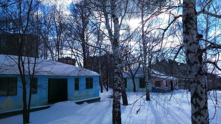 Детский лагерь у Волги хотят продать одному из самых богатых самарских аграриев