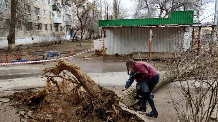 Не смоет, так сдует: на Волгоградскую область идут сильные дожди и штормовой ветер