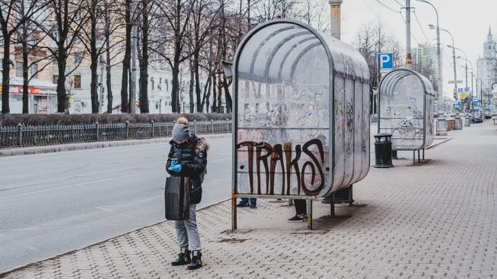 «Уберут граффити и объявления»: в Перми отмоют 700 остановок