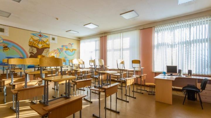 В Кургане из-за морозов отменили занятия для школьников с 1-го по 7-й классы
