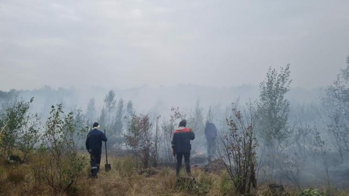Молились о дожде, и он пошел: как спасали башкирскую деревню, которую эвакуировали из-за пожара
