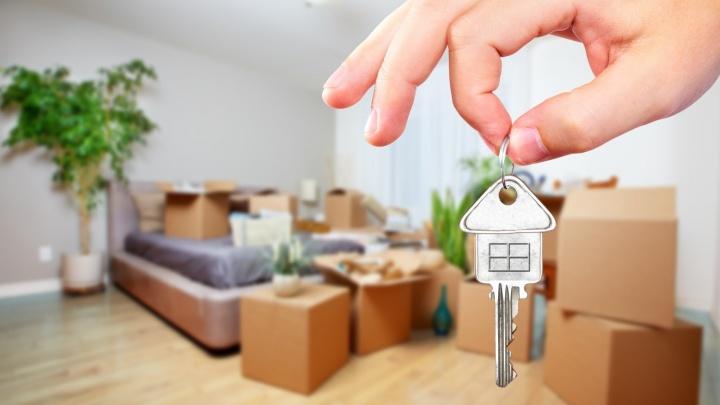 Фейковые дешевые квартиры с ремонтом и очередь из жильцов: как в Красноярске снять жилье в аренду