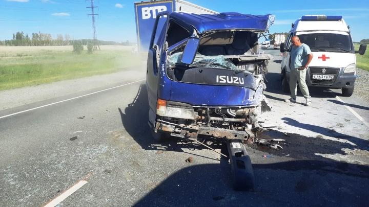 В Калачинском районе столкнулись два грузовика и легковушка — погибли два человека