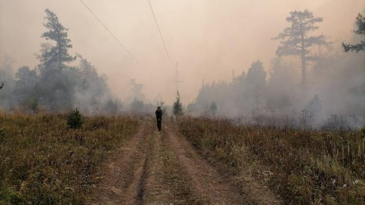 Добровольцев Башкирии попросили не заниматься самодеятельностью при тушении пожаров