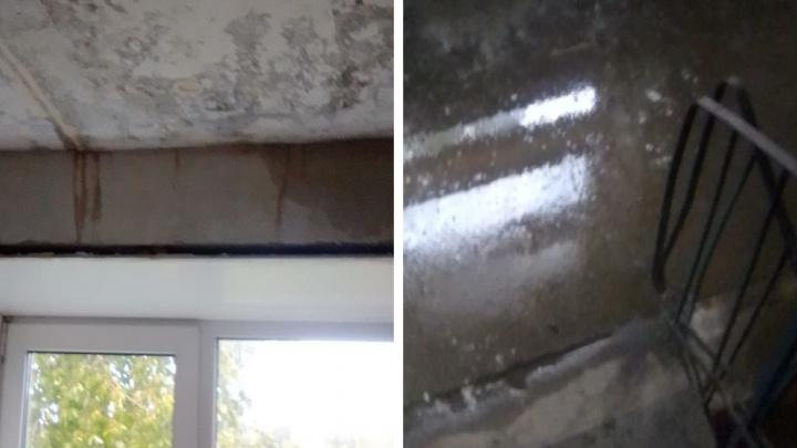 «Нас никто не слышит»: в Ярославской области жители многоквартирного дома год живут без крыши