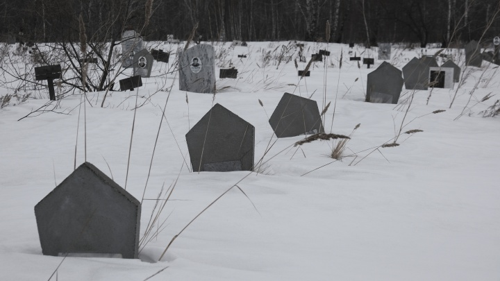 «Хочешь увидеть ад на земле — поезжай на Покровское»: кого и как хоронят на неизвестном кладбище Челябинска