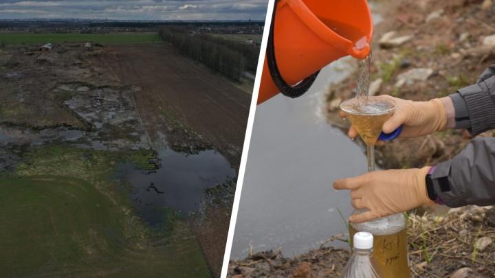 «Угроза инфекционных болезней»: под Ярославлем в реку попал навоз