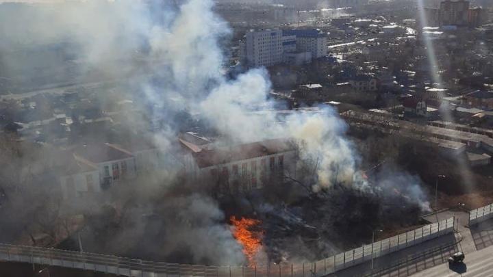 Около тюменской гимназии загорелась трава. Огонь удалось вовремя остановить