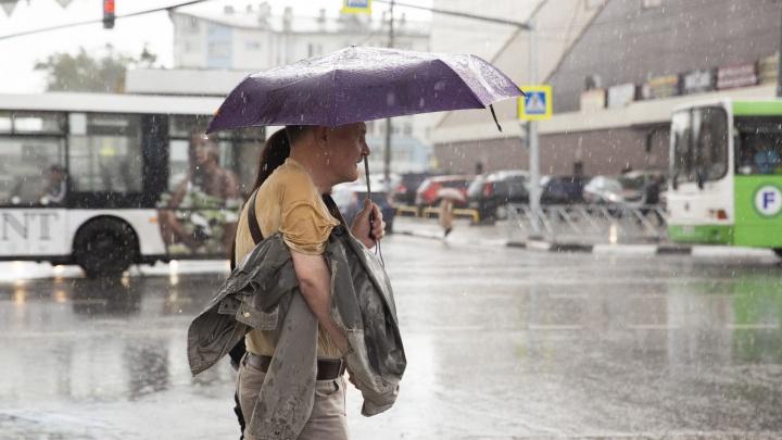 Грозы и скачки давления: синоптики сообщили об изменениях погоды в Ярославской области
