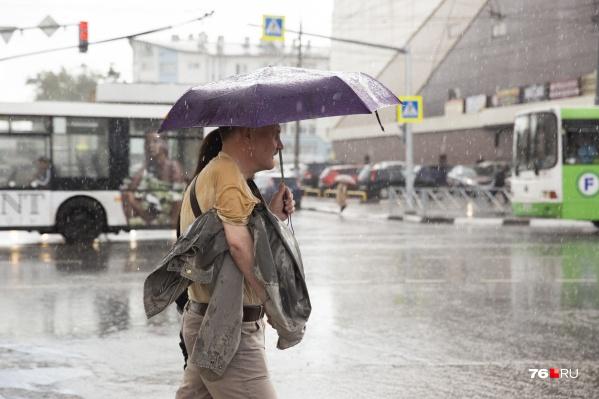 В ближайшие дни в Ярославле будет тепло, но дождливо