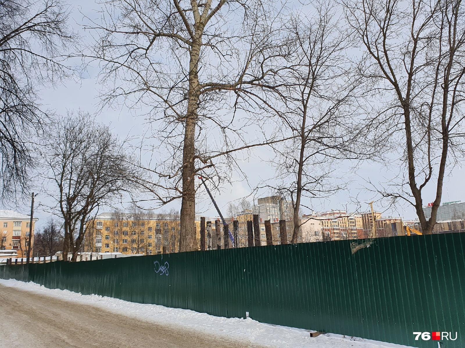 """Анатолий Каширин уверен, что в бывшем троллейбусном депо оставалась металла более чем на <nobr class=""""_"""">2 миллиона</nobr> рублей"""