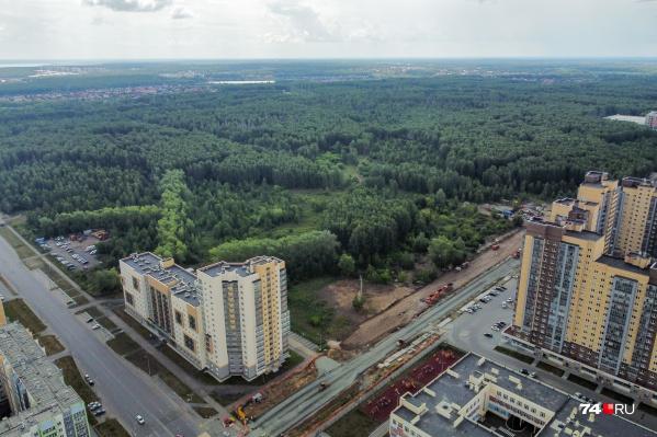 Что будет на территории с зеленым массивом напротив ЖК «Ньютон», решится по окончании работы над проектом
