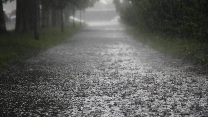 Июль в Кургане будет дождливым
