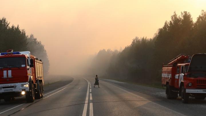 Полыхающий лес, задымленная трасса и десятки пожарных. Главное о крупном возгорании на Пермском тракте