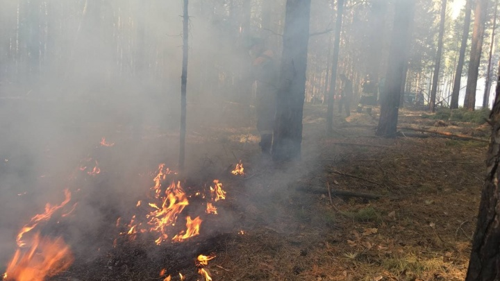 В Тюменской области продлили пожароопасный сезон