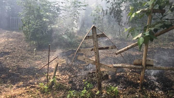 В Тюмени горит кладбище. Из-за этого перекрыли две полосы движения