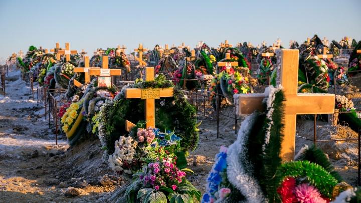 Ручей поблизости и хватит на 4 года: депутаты раскритиковали место для нового кладбища у Старцево