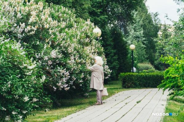 В дендросаду можно насладиться ароматами цветов