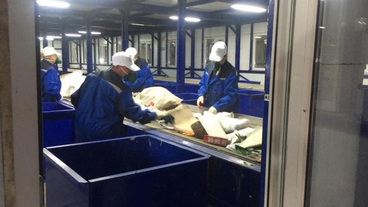 Свыше тысячи тонн отходов из Ростова-на-Дону отправили на вторичную переработку с начала года