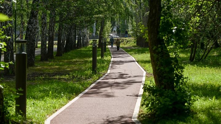 К отдыху через протесты: как екатеринбуржцы отвоевали парк за Дворцом молодежи