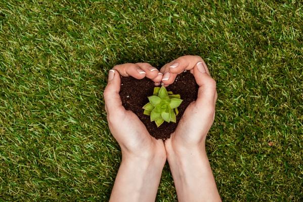 Главная цель — привлечь внимание общественности к проблемам охраны окружающей среды