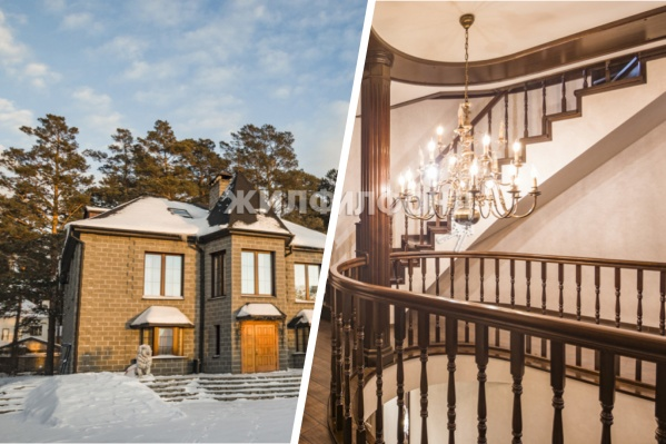 Двухэтажный дом с фигурами львов на входе продавался и раньше. Его цена неизменна — 30 миллионов рублей