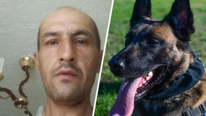 Обвиняемый в убийстве пермской туристки натравил собаку на полицейских, когда его задерживали