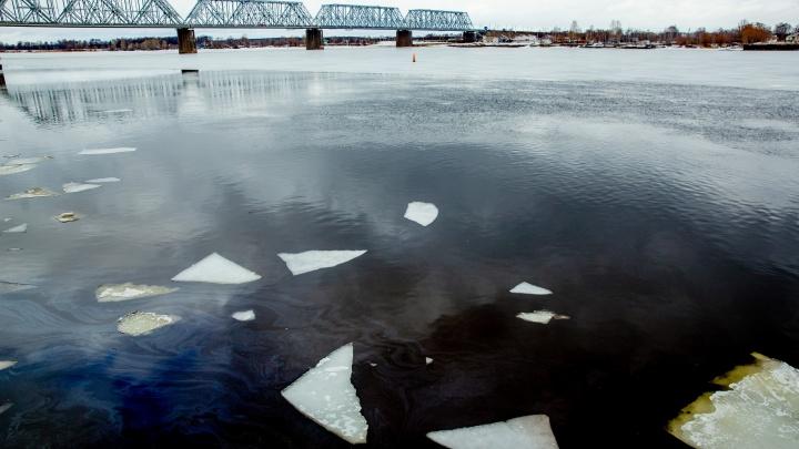 В Рыбинске в реке нашли тело молодого мужчины